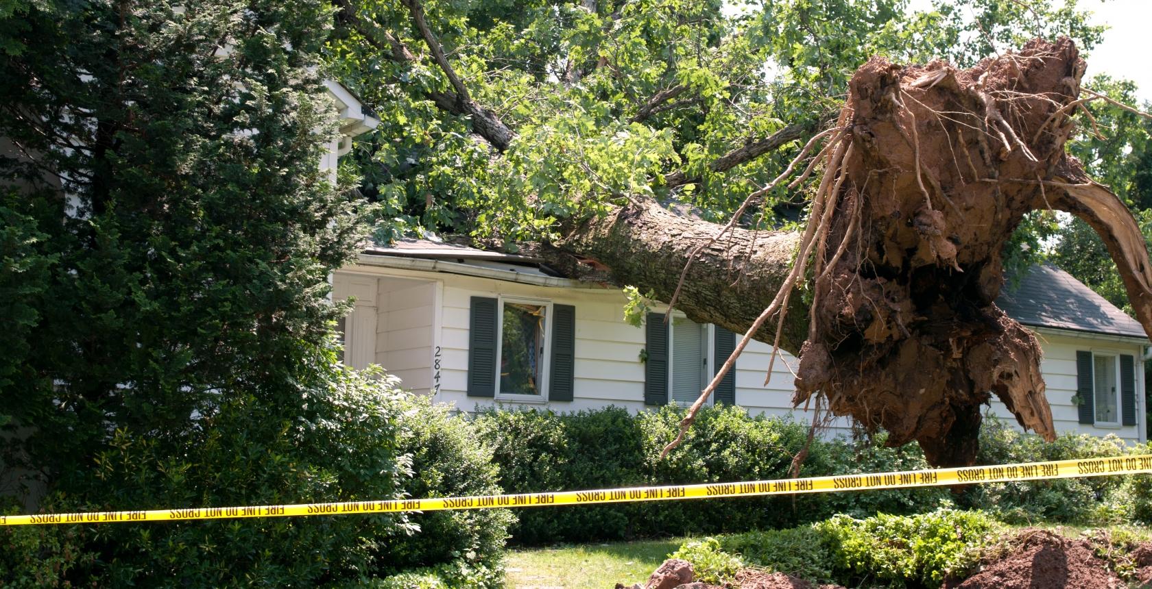 Storm Damage Restoration - Ripple Rock Restorations